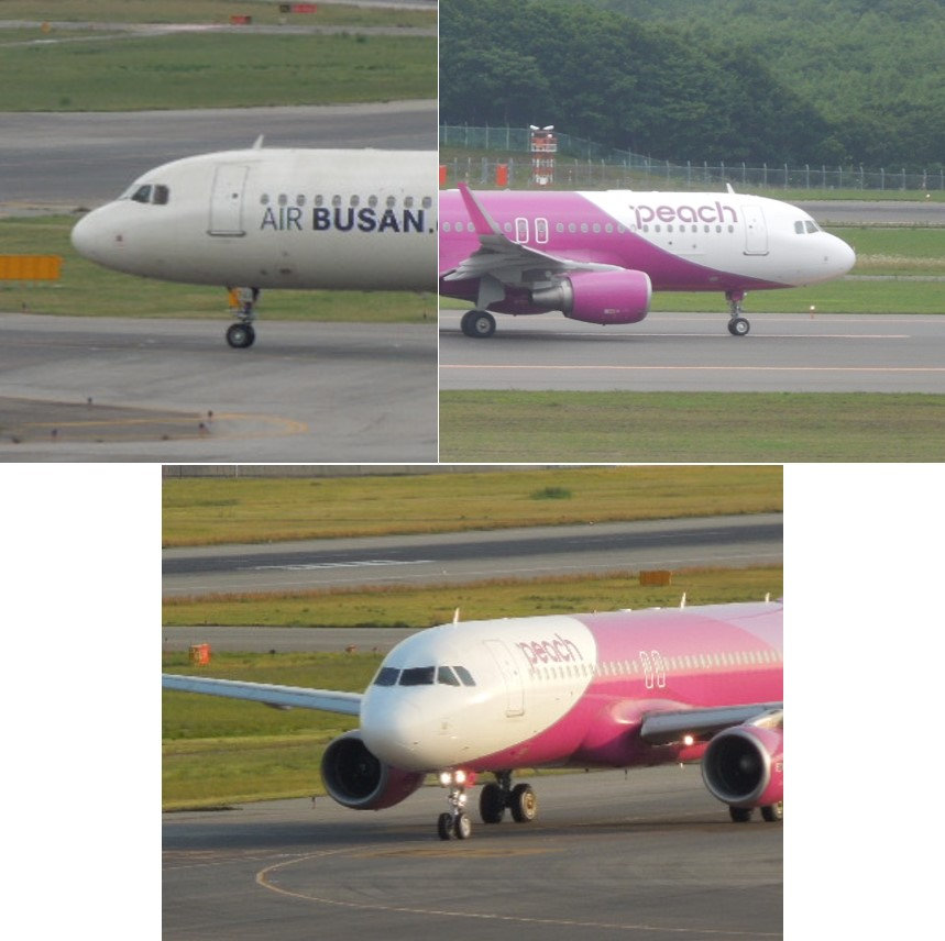 A320 Familyのノーズ画像