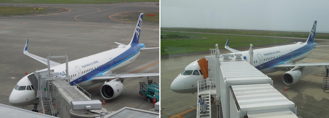 A321CEOとNEOのエンジンの大きさ比較画像