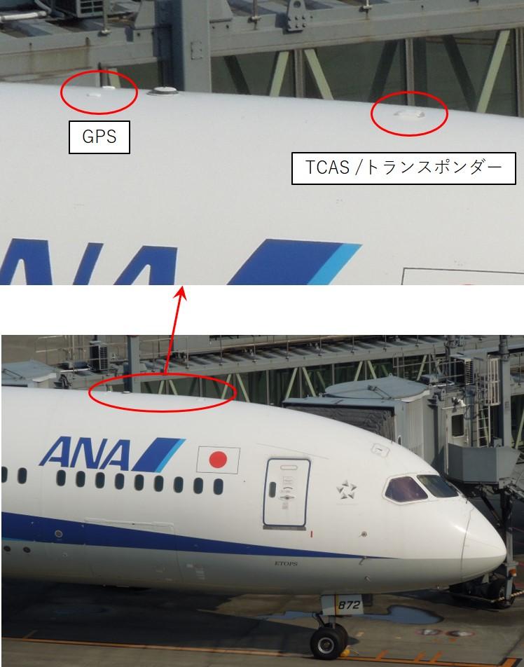 TCAS/トランスポンダーのアンテナの画像