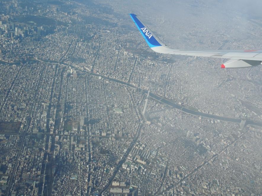 スカイツリーの間近を通過する飛行機